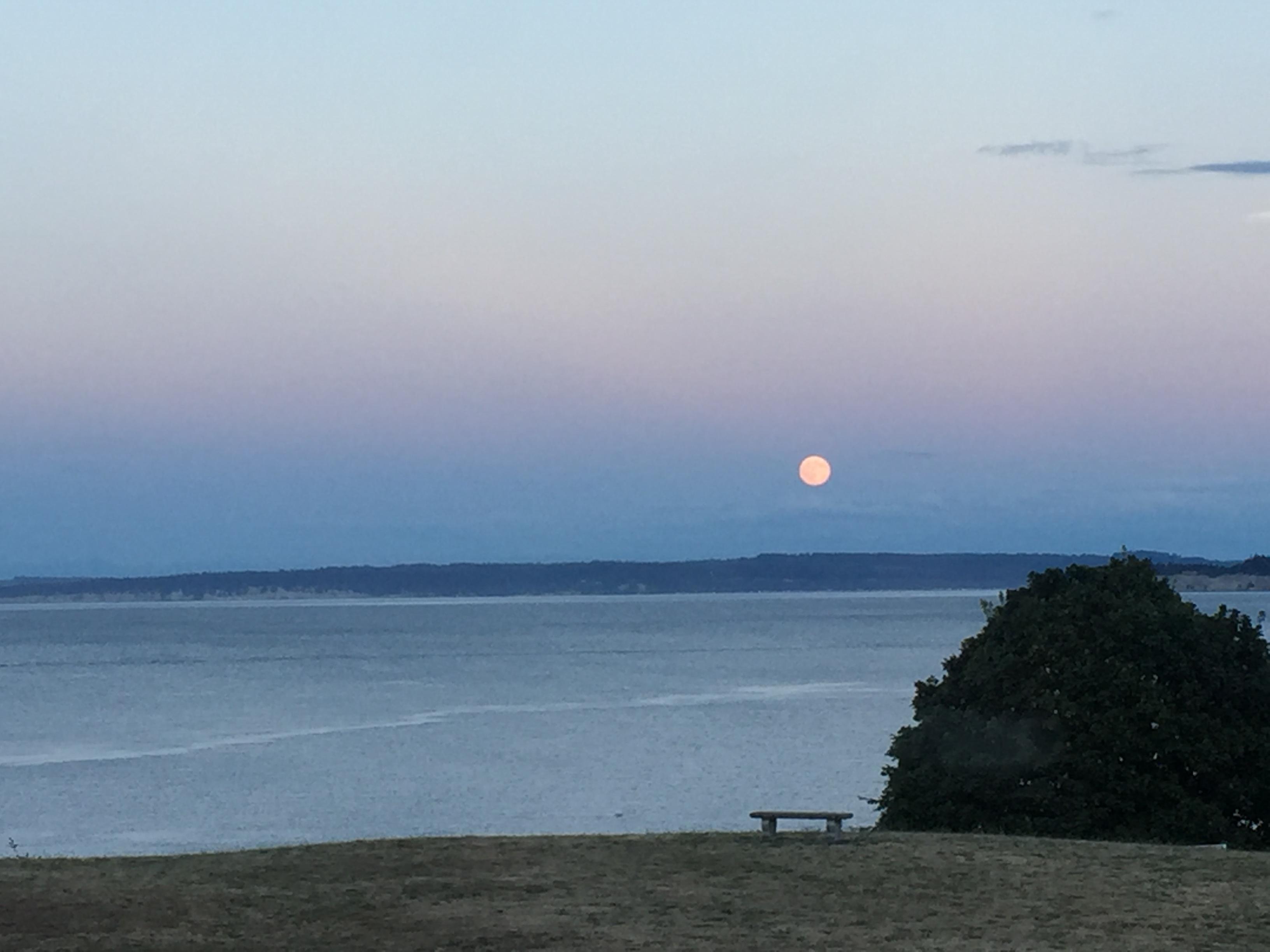 PT moon